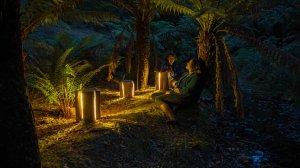 Стильные светильники из обрезков бревна