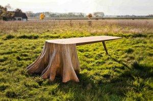 Замечательный стол из старого пня