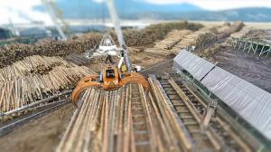 Эпичное видео работы лесоперерабатывающего завода