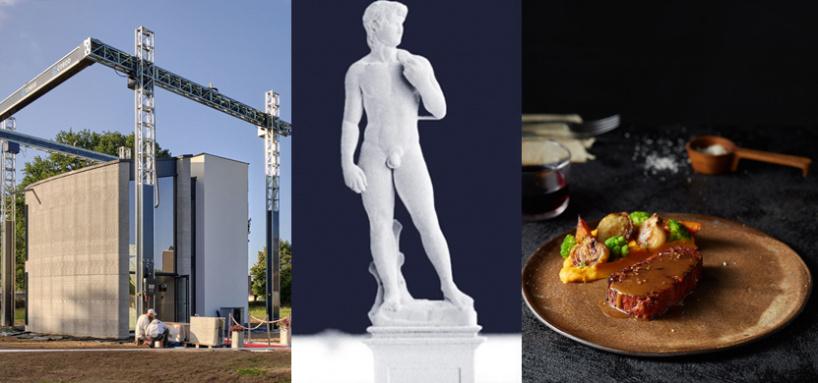 Возможности 3d принтеров: 2-ух этажный дом, миллиметровая статуя давида и веганский стейк