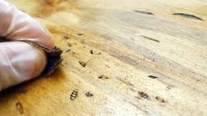 7 предельно легких способов состарить древесину