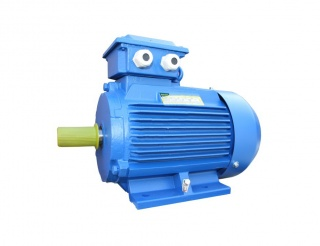Асинхронный общепромышленный электродвигатель 5АИ 100 S2