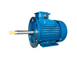 Асинхронный общепромышленный электродвигатель 5АИ 100 S2 Ж
