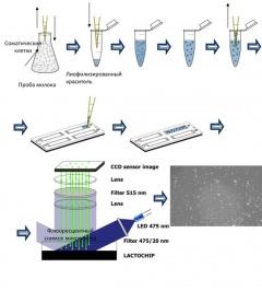 Анализатор прямого подсчёта соматических клеток и бактериальной обсеменённости в молоке NEW SCC