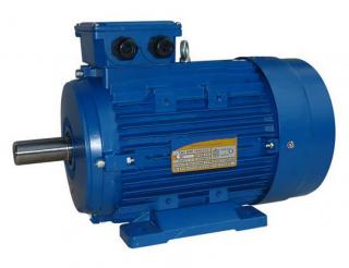 Асинхронный общепромышленный электродвигатель 5АИ 100 L2