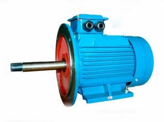 Асинхронный общепромышленный электродвигатель 5АИ 112 M2 Ж
