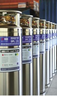 Криогенный холодный газификатор вертикального типа DPL-196